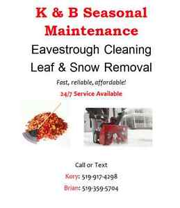 Eavestrough cleaning, leaf & snow removal