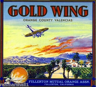 Fullerton Gold Wing Airplane Orange Citrus Fruit Crate Label Art Print