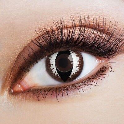 aricona Farblinsen braune Kontaktlinsen Katzenaugen Katzen Kostüm - Schwarze Augen Kontakte Kostüm