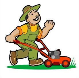 Gardener Available-- Experienced, Friendly -- References Available -WEST London area
