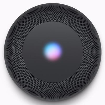 Apple HomePod Portable Smart Speaker Space Gray -