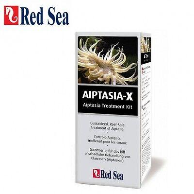 Red Sea Aiptasia-X 60 ml gegen Glasrosen Aiptasia Majanos