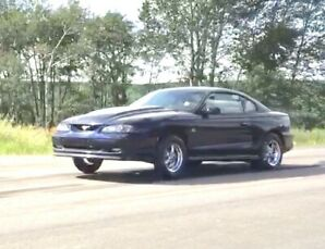 Supercharged 331.  1994 Mustang GT