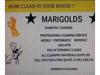 DOMESTIC CLEANING & IRONING 5 STAR SERVICE⭐