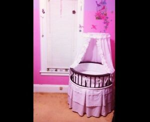 Bassinet  Windsor Region Ontario image 1