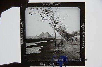 original Foto auf Glasplatte Ägypten Weg zu den Pyramiden um 1900