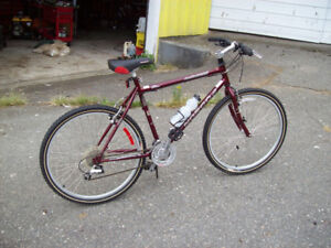 NORCO KOKANEE 24 SPEED