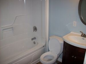 Apt for rent immediately! St. John's Newfoundland image 2