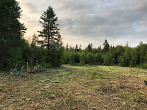 10 Acres of Land for Sale with Garage, Small Building & Pond