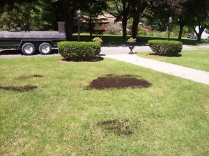 BY THE YARD, Lawn and Garden Care Belleville Belleville Area image 4