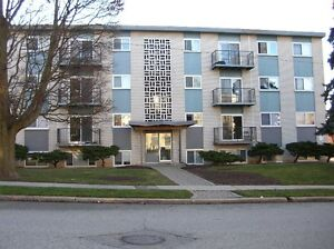 2 bedroom apartments for May or September 2017 Kitchener / Waterloo Kitchener Area image 1