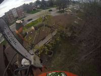 ROYAL CITY TREE CARE free quotes CALL NOW