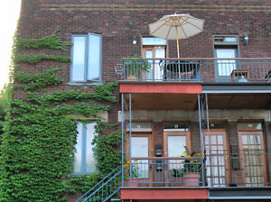 Large 6 1/2 in Plateau Montreal, fully furnished and equipped