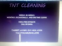 TNT CLEANING