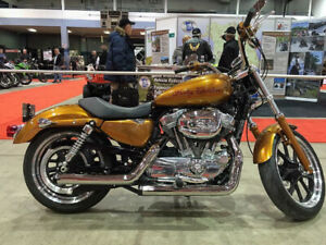 2014 HARLEY DAVIDSON SPORTSTER XL 883 L SUPERLOW FOR SALE