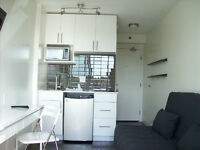 Furnished 150 sq ft. micro unit available June 1st
