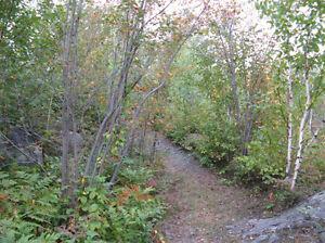 terrains boisés sur le bord du Saguenay a Shipshaw Saguenay Saguenay-Lac-Saint-Jean image 6