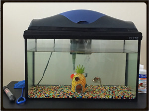 ELITE AQUARIUM 10 gallons ***Fish included***