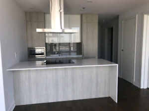 Brand new and sunny 4 ½ near metro peel 2000$/month.