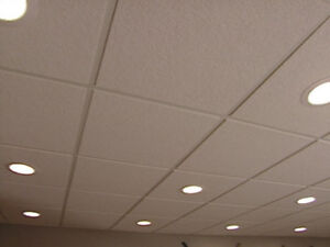 Wanted: DROP CEILING . . . ANY STYLE