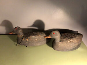 Duck Decoy - Antique Pair