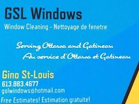 Window cleaning / Lavage fenetre