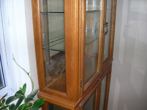PRISTINE DISPLAY CABINET FOR DINING ROOM OR GENERAL WITH LIGHTS Kitchener / Waterloo Kitchener Area image 5