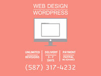 Need Help with Website? Professional Web Developer