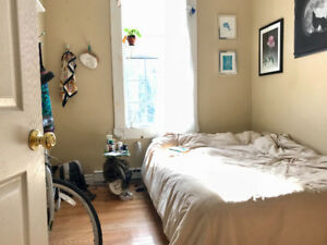 1 Bedroom for Summer Sublet - Near Dalhousie, May 1st-Aug 31st