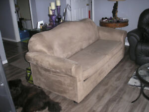 pull out couch and  love seat.