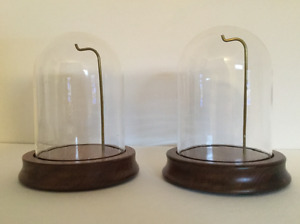Glass Dome Wooden Base Ornament Display Case
