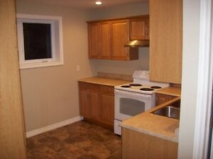 Apt for rent immediately! St. John's Newfoundland image 3