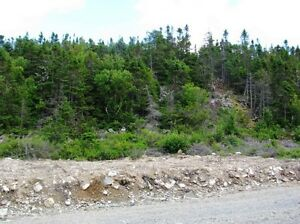 LOT 9 Hillview Rd - Georgetown, NL - MLS# 1135354 St. John's Newfoundland image 5