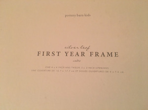 Pottery Barn Kids Picture Frames