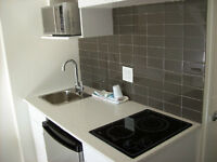 Furnished micro unit near VGH, utilities included