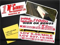 Long Haul Truck Driver - LMIA's available!!