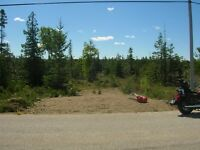 Old Pine Tree Harbour/Lake Huron Building Lot