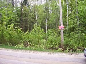 TERRAIN RIVIÈRE-ROUGE L'ANNONCIATION CHEMIN DES HÊTRES Gatineau Ottawa / Gatineau Area image 1