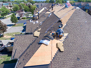 Over 2,000 customer called for roofing estimate 519-551-3808