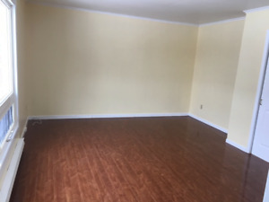 Large 1 Bedroom Apt available in East end of St. John's