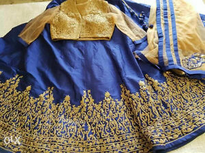 Beautiful East Indian Party dress