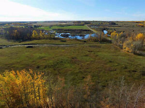 Beautiful 5 Acres In Parkland County