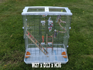 With cage all inclus toys conure lovebird