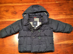 Baby Gap Navey Jacket