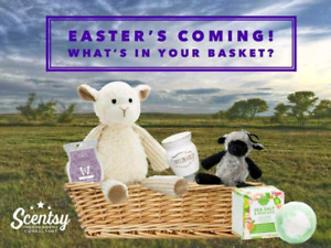 Easter Scentsy Baskets