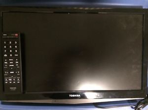19 inch Toshiba flat screen with wall mount and dvd player