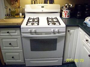 Gas Stove & Range Hood Fan