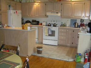 27 solid oak kitchen cabinets doors;  and hardware for sale
