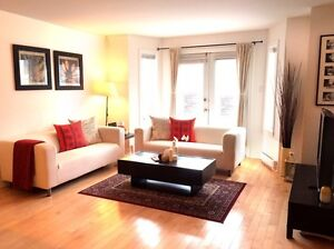Beautiful, Furnished Apt in Downtown - ALL INCL - 2bdrm, 2bth