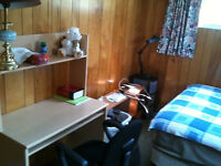 3 bedrooms for rent from 01. Nov.2015. 学生优先!